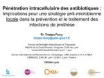 Pénétration intracellulaire des antibiotiques : Implications pour une stratégie anti-microbienne locale dans la prévention et le traitement des infections de prothèse