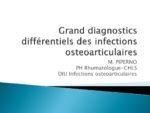 Grands diagnostics différentiels des IOA (maladies inflammatoires, microcristallines, etc.)