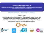 Physiopathologie des IOA