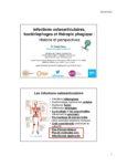 Infections ostéoarticulaires, bactériophages et thérapie phagique : histoire et perspectives