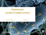 Phagothérapie : concept et modèles animaux